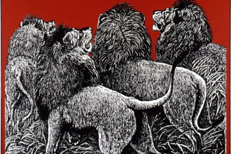Lovely Creatures.Aachen900x600